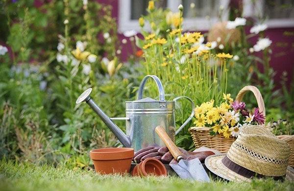 Какие товары для дачи нужно иметь начинающему садоводу?